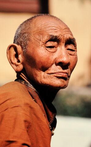 File:Mongolian Lama.JPG