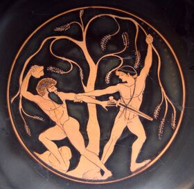 Theseus Sinis Staatliche Antikensammlungen 8771