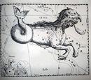 Cetus (mythology)