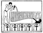 Osiris-nepra