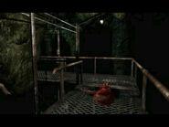 Cavernous passage (3)