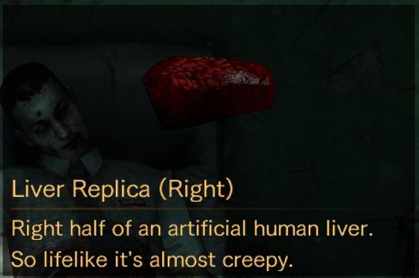 File:Liver Replica Right description.jpg