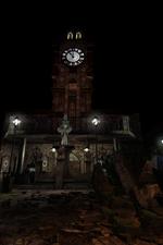 Raccoon Clocktower
