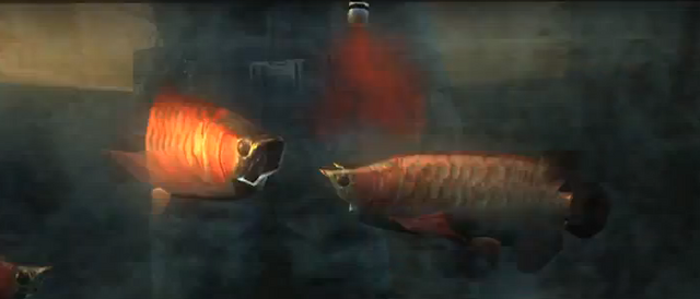 File:Arowanas being infected with t-Abyss.png