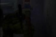 Zombie calico