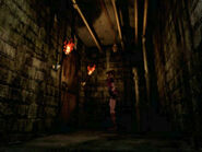 Irons' secret passage (6)