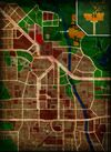 Raccoon map