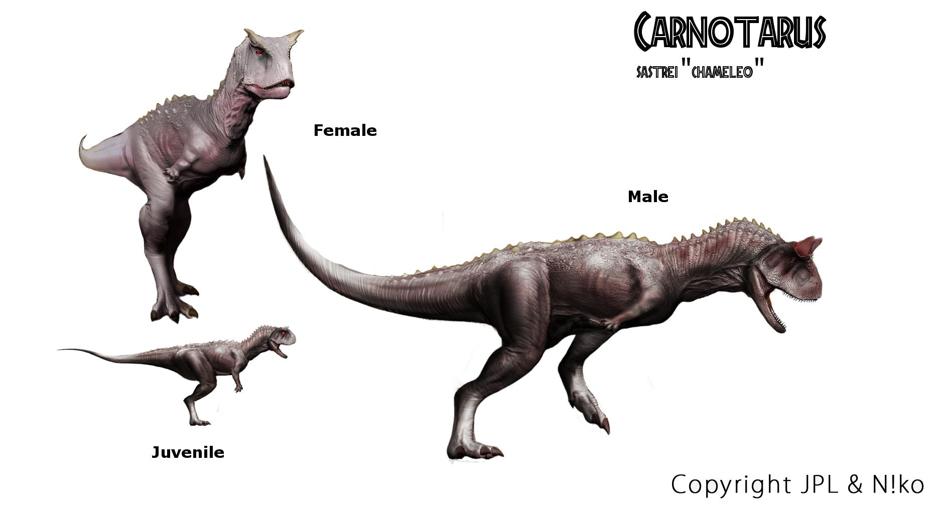 carnotaurus sastrei quotchamaeleoquot return to new lands