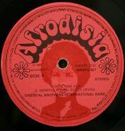 Afrodisia DWAPS2193 1
