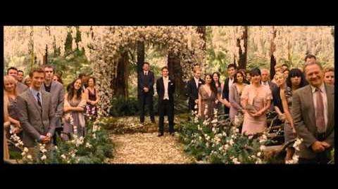 RiffTrax - Twilight Breaking Dawn pt 1 - Trailer!-1403145854