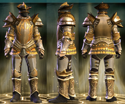 Gold Plate Set Male