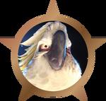 Bronze Badge - Nigel