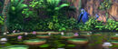 Discover the Forest with Rio 2 00 00 17 05 525
