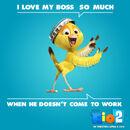 Nico I Love My Boss