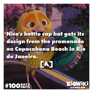 Rio-Wiki-100Days100Facts-055