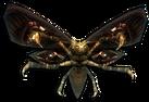 Grave Moth