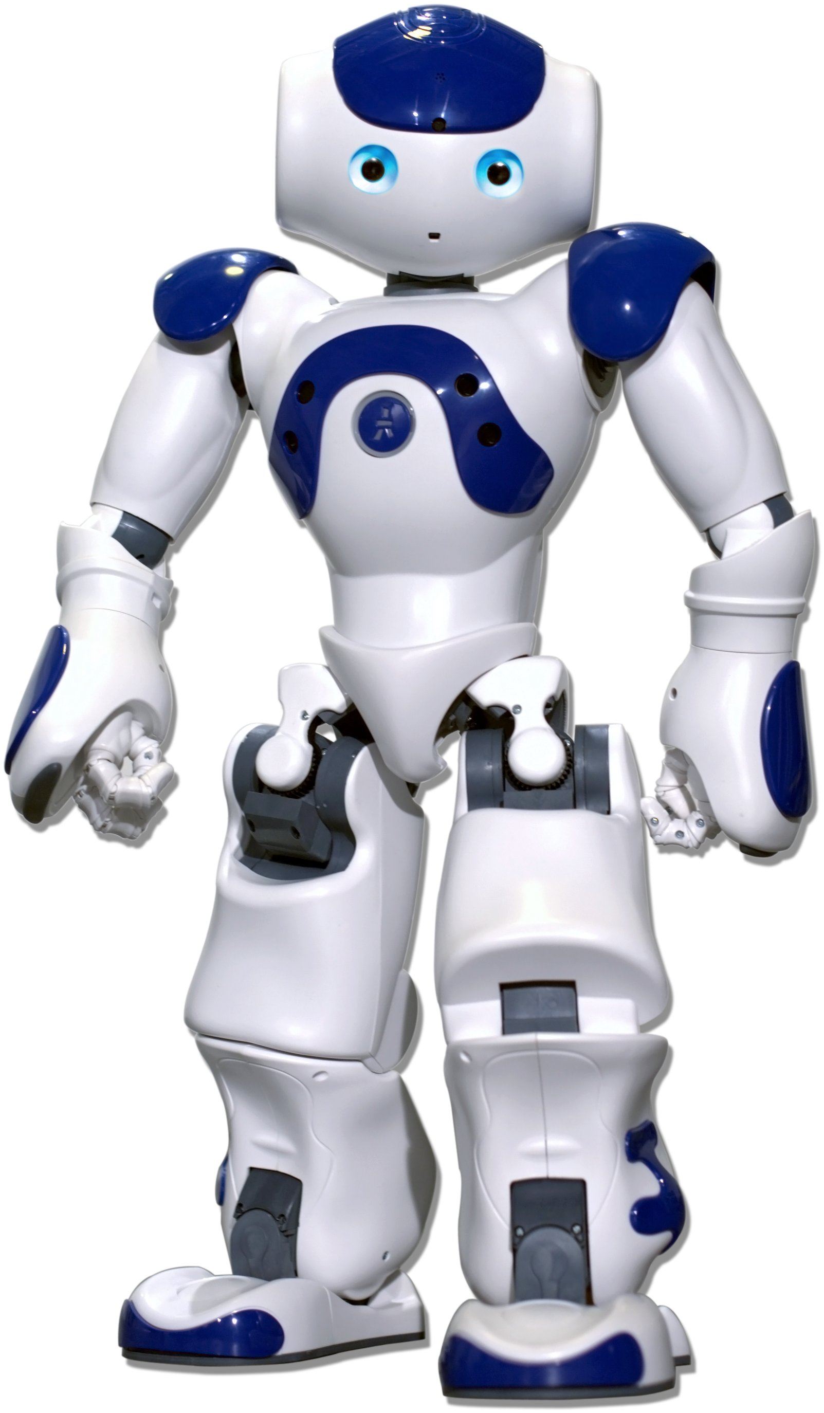 About NAO Robot | Brainary Interactive