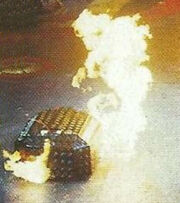 Terror bull fire