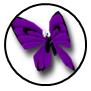 Rank s 08 monarch