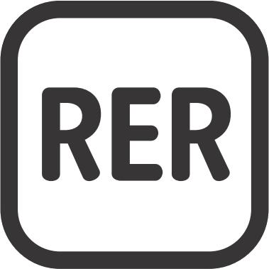 Rer-paris.png