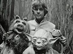 Luke and friends on Dagobah.jpg