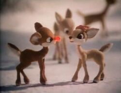 Clarice | Rudolph The ...