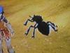 Killer ant