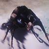 Beetle-0