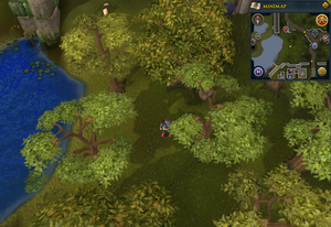 Compass clue Falador south of Heist entrance