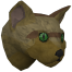Pet cat (brown) chathead
