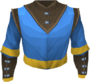 Wizard robe top (g) detail