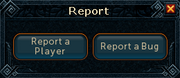 Report interface