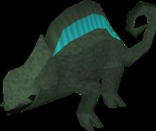 Adult chameleon (Zanaris)