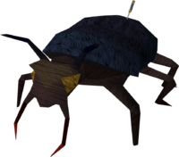Giant scarab (contact!)