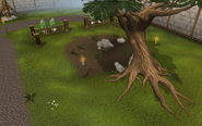 Woodcutting plot