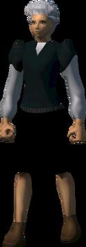 Defender (NPC)