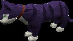 Pet cat (purple) pet
