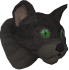 Overgrown cat (black) chathead