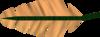 Orange feather detail