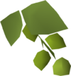 Asgarnian hops detail