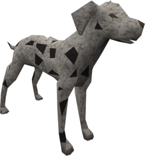 Dalmatian (black) pet