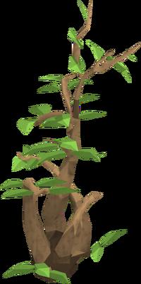 Marker plant