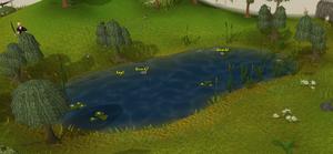Lumbridge fishing spot old