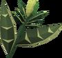 Wildercress (item) detail