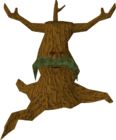 Elder spirit tree old