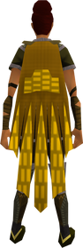 Team-16 cape equipped