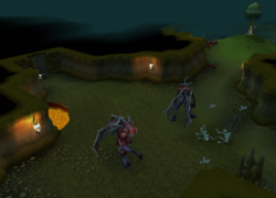 Inside entrana dungeon