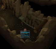 Log trap