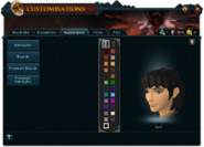 Customisations (Appearance) interface