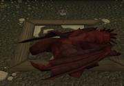 Dragon Sleep